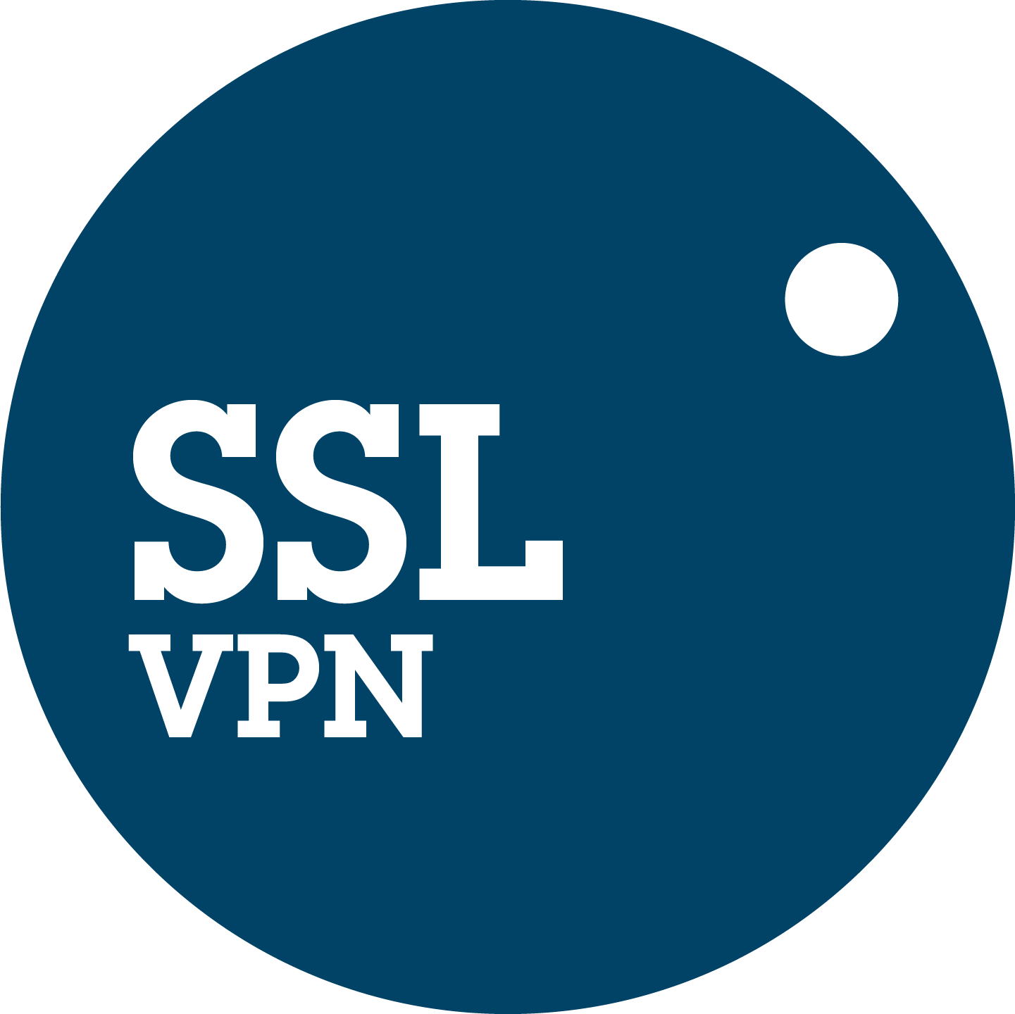 SSL Virtual Private Network VPN